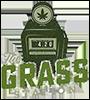 SEO de cànnabis