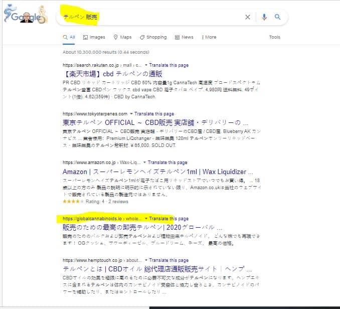 SEO Example International